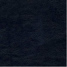 Black Solid Standard Placemat Pads -- 13.5 by 18.5 Inches