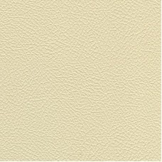 Bone White Solid Standard Placemat Pads -- 13.5 by 18.5 Inches